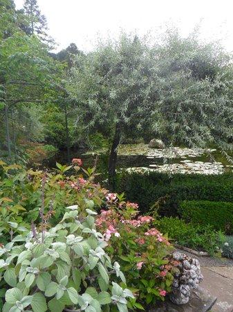 Gresgarth Hall Gardens: Follow the paths