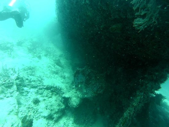 Puruni Wreck: Props can still be seen above the sea bed