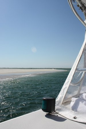 Monomoy Island Excursions: on the boat