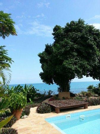 Private garden - ocean view
