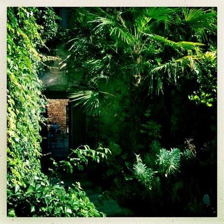 La Maison d'Ulysse : la belle végétation !