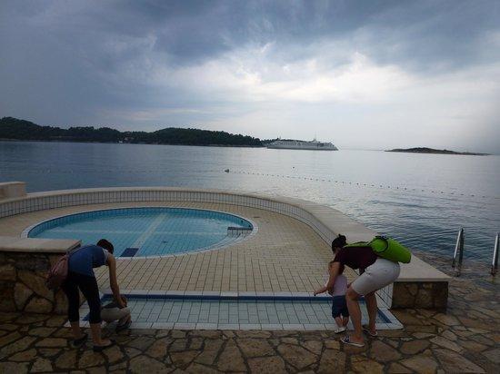 Hotel Odisej Mljet : Piscine pour enfants