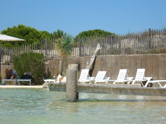 Yelloh ! Village Secrets de Camargue : piscine lagon