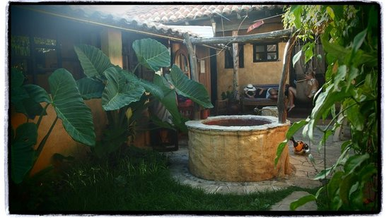 Posada del Abuelito : the front garden