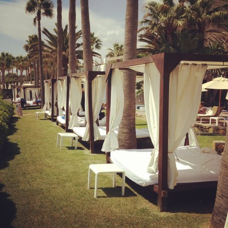Don Carlos Leisure Resort & Spa: Beach club