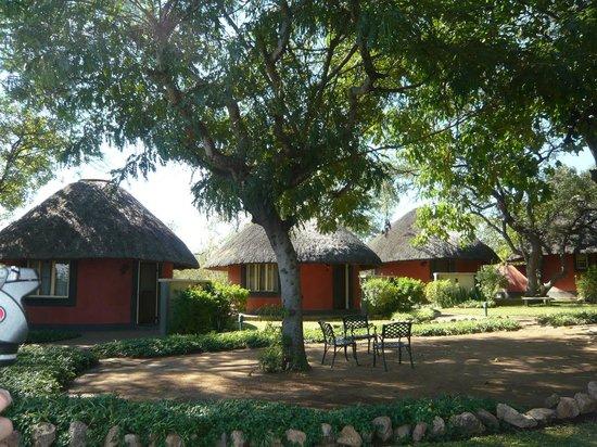 Mohlabetsi Safari Lodge: The Lodges
