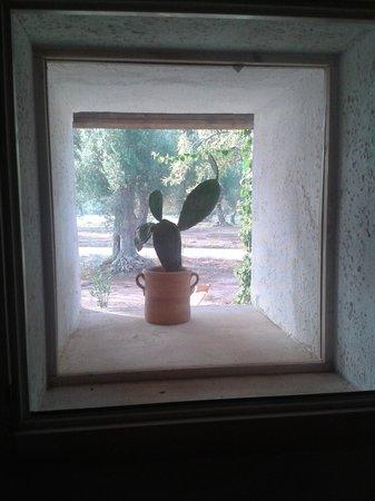 I Mulicchi Resort: Dalla finestra