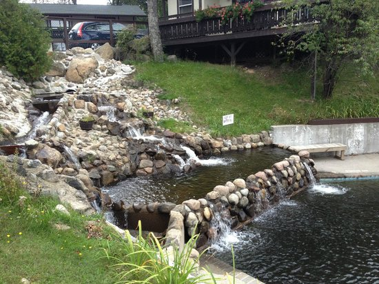 Wildwood on the Lake: outside stream feeding the outdoor pool
