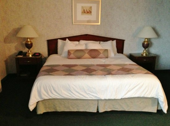 Medallion Hotel : King Size Bed