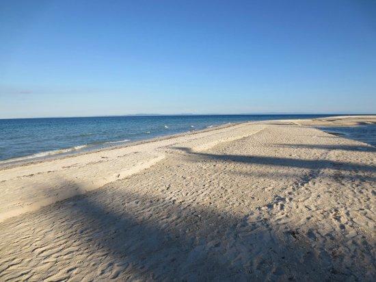 Nordic Inn: The beach just meters away