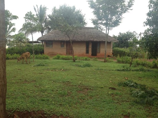 Our Native Village: Resort View