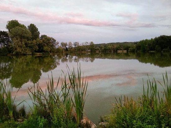 Camping de l'Aigrette: L'étang le soir