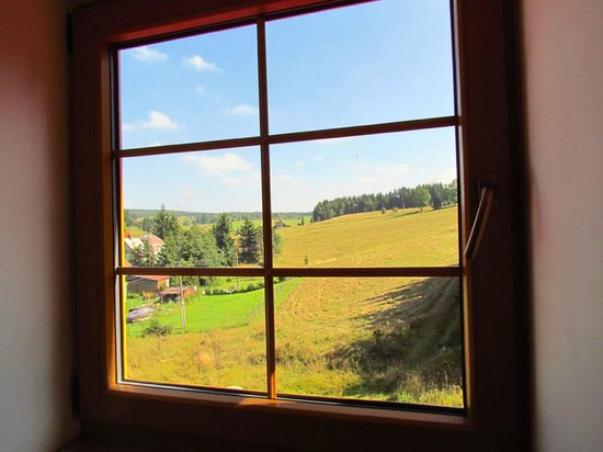 Hotel Ochsendorf: Window view
