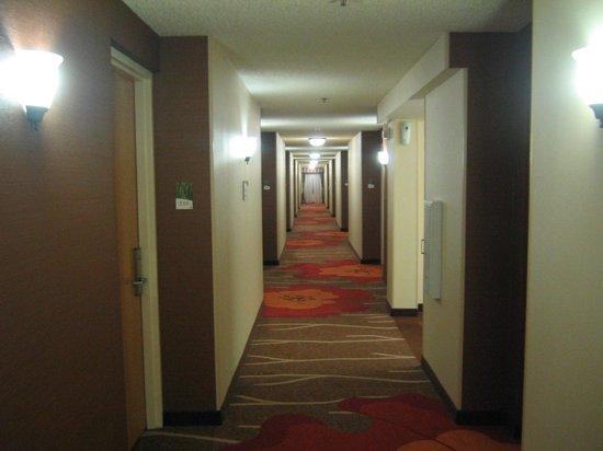 Hilton Garden Inn - Orlando North/Lake Mary: Hall