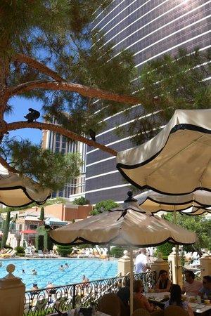 Terrace Pointe Cafe: Colazione a bordo piscina