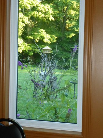 Normandale Inn: Window at the Inn