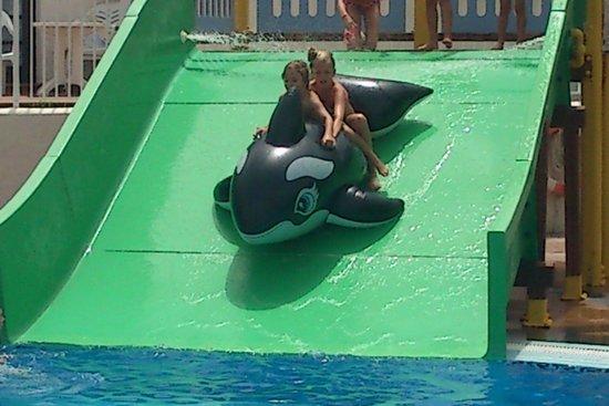 HD Parque Cristobal Tenerife: piscinas