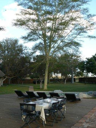 nDzuti Safari Camp: Dining outdoors