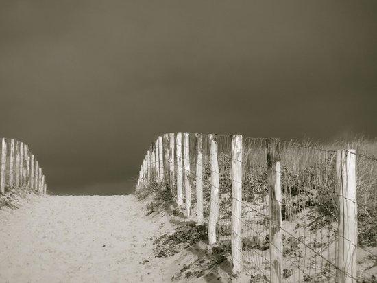 Hotel des Dunes : En haut de la dune ... bientôt l'océan