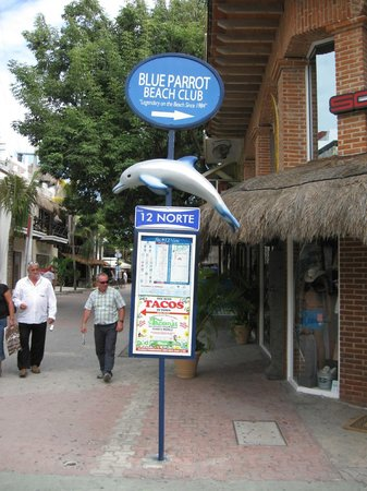 Blue Parrot 5th Avenue: Blue Parrott sign