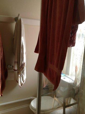 New Road Guest House : Bathroom ensuite