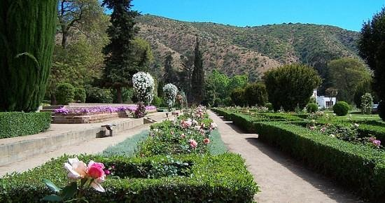 Jard n botanico nacional de chile vi a del mar chile for Jardin lankester