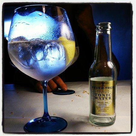 Hotel Posada y Restaurante Torre Berrueza: gin tonic