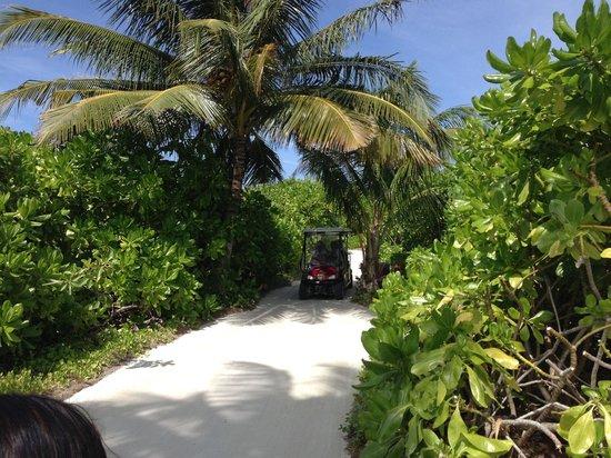 PER AQUUM Niyama Maldives: Caminos de la isla