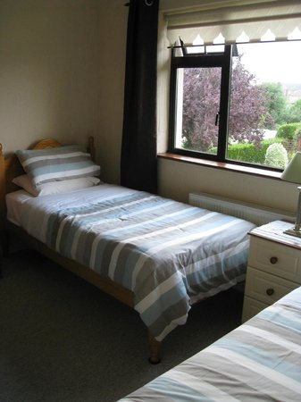 Mountview Bed and Breakfast: Twin room