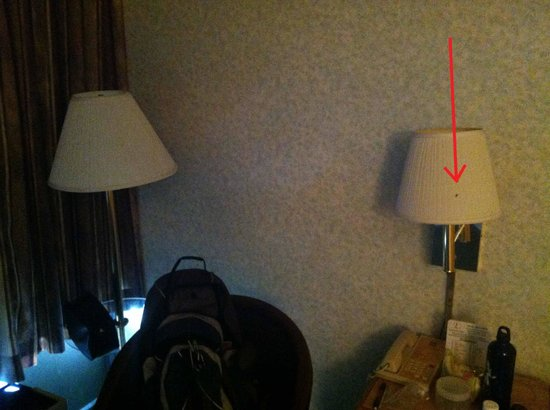 Knights Inn Baltimore West: A fly on one of the non functional lamps