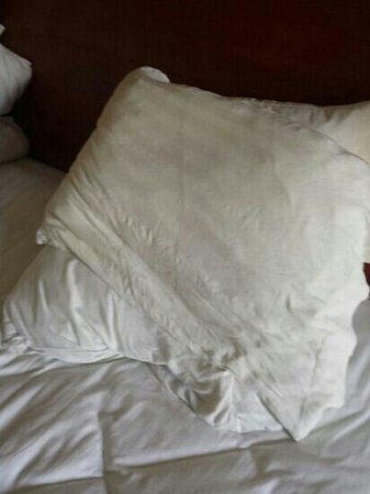 Holiday Inn Cincinnati Riverfront: this was supposedly their wonderful pillows that it took an hour and a half for them to bring up