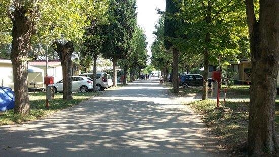 Gasparina Village: Viale