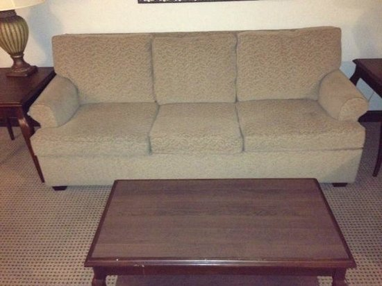 Embassy Suites by Hilton Philadelphia Airport: pull out sofa