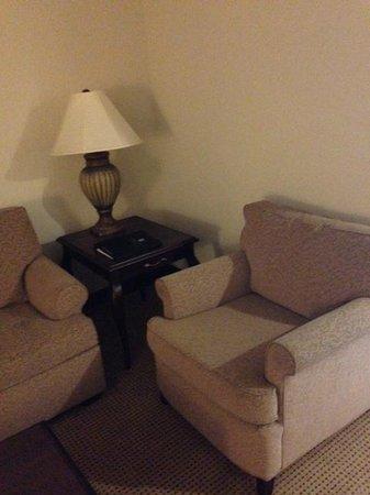 Embassy Suites by Hilton Philadelphia Airport : Living room