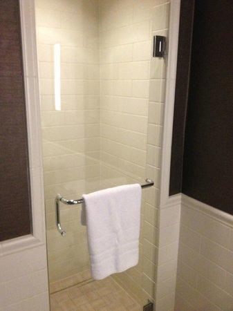 Loews Madison Hotel: Shower - No Shelves for Soap, Etc