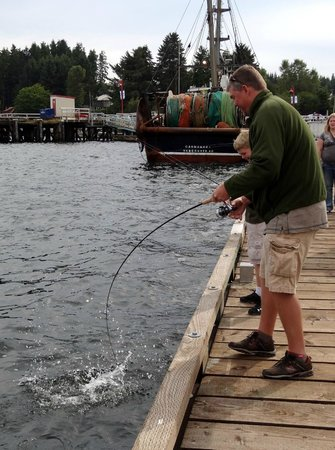 Bear Cove Cottages Resort and Wicked Salmon Sportsfishing: Government Wharf