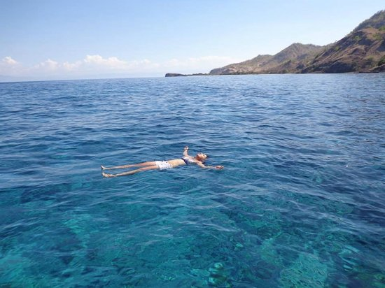 Imagine Fishing Charters Timor Leste: Snorkeling in Atauro