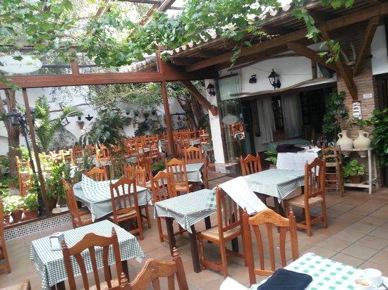 Hotel Restaurante Blanco y Verde: tipico patio andaluz,para desayuno comidas...
