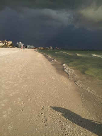 Saint Pete Beach : Aesome Beach for Shelling