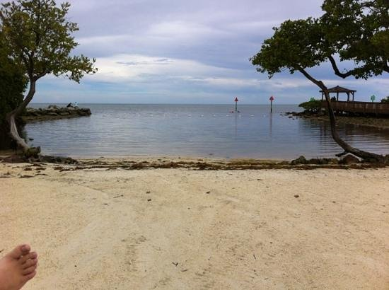 Ocean Pointe Suites at Key Largo: beach at the hotel