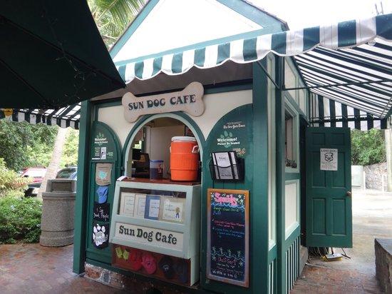 Sun Dog Cafe: unexpected, open air quaint cafe.
