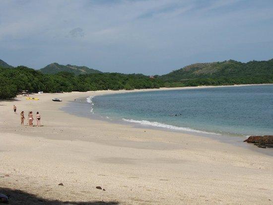 Bahia del Sol Beach Front Hotel & Suites: Playa conchal
