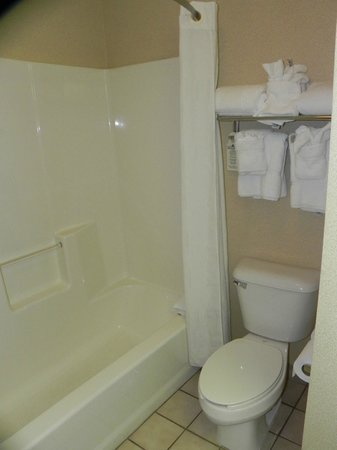 Comfort Suites Benton Harbor : Bathroom