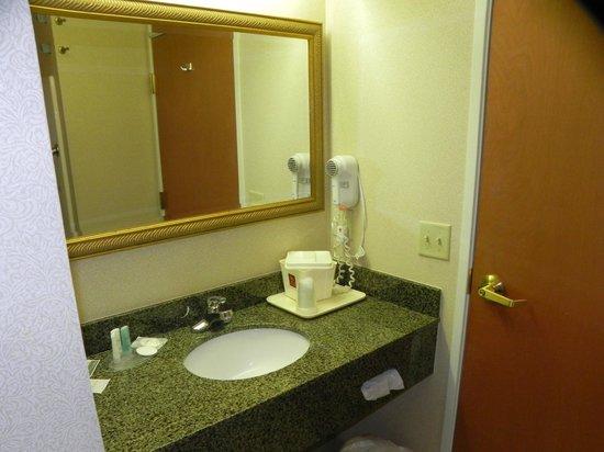 Comfort Suites Benton Harbor: Vanity