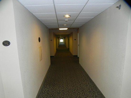 Comfort Suites Benton Harbor: Hallway