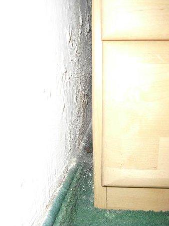 Hotelanlage Edelweiss: Hace tiempo que habitan arañas en la habitación nº 4