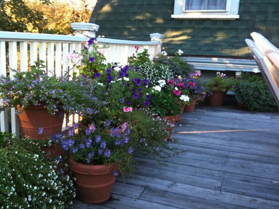 Yankee Peddler Inn: Flowers on roof deck