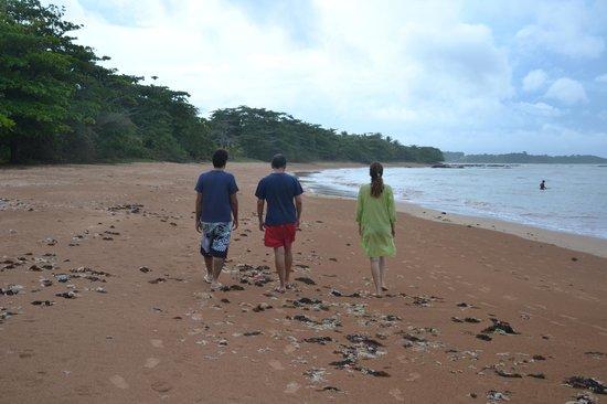Pousada Terra Mar: ótimo para caminhadas