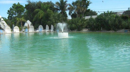 Pyramids in Florida: pool area