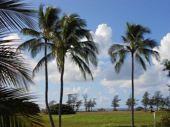 Plantation Hale Suites: view from our lanai